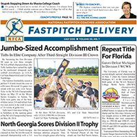 Fastpitch Delivery Newspaper