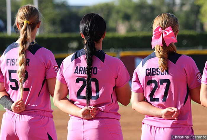 USA Softball PINK Auction for Susan G  Komen for the Cure® Runs