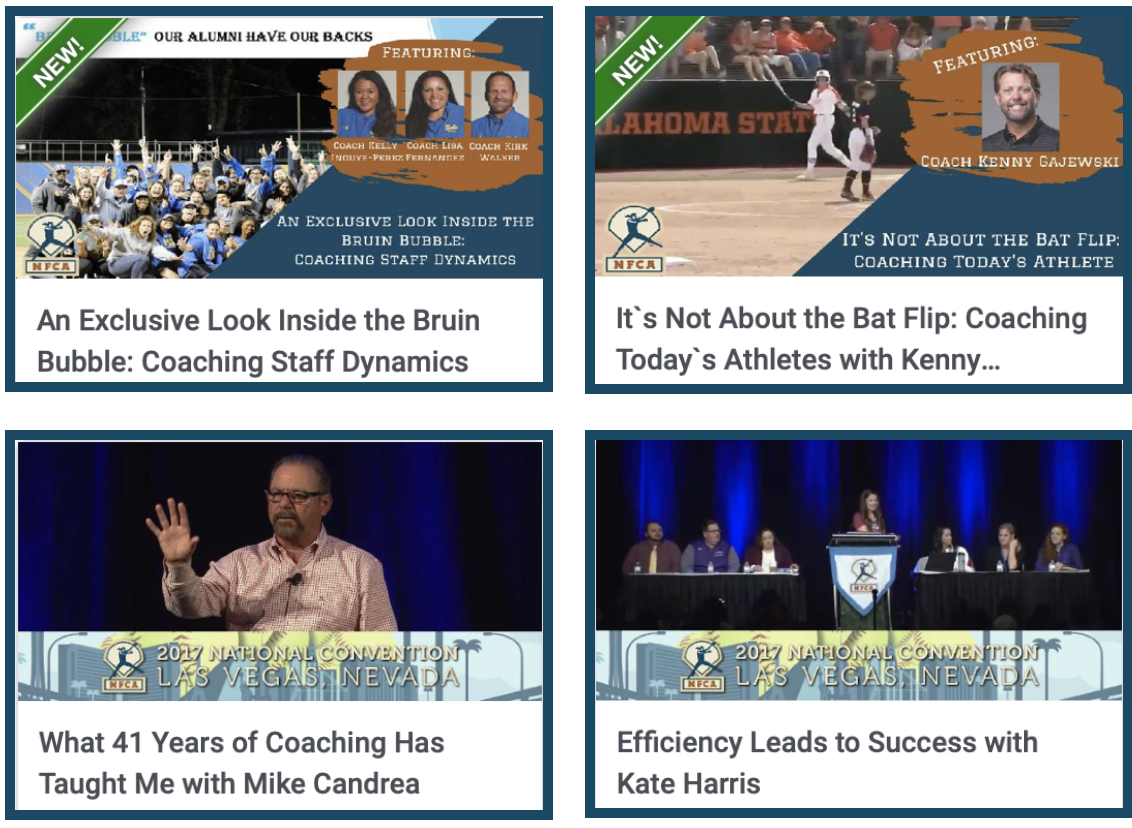The Path To Success Video Bundle