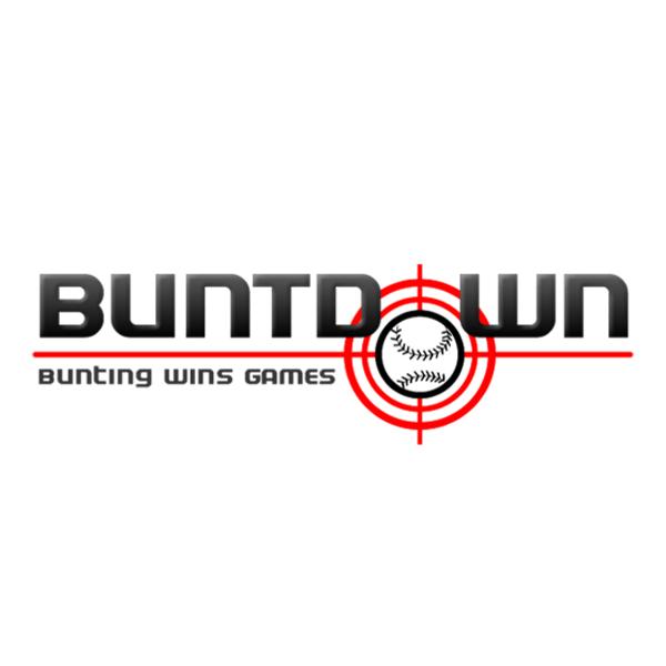 Buntdown Bat